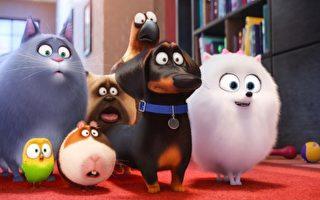 《寵物當家》台票房冠軍 配音為雪球帶活力