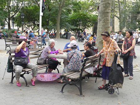 華埠獨居老人的現象十分普遍,尤其是獨居婦女多,隨著年輕一代搬離華埠,老人大多選擇獨自在華埠生活。圖為老人們在華埠哥倫布公園打牌。
