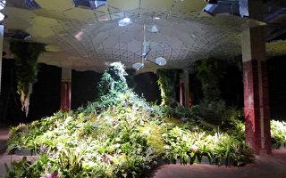 世界首座地下公園 紐約打造