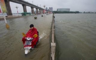 近百湖泊被填平 無處可去的水吞噬武漢