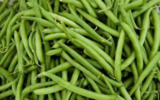 澳洲四季豆供應短缺 價格飆漲