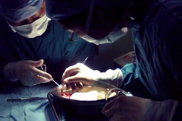 組圖:國際醫學期刊雜誌譴責中共強摘器官