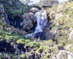 賴斯莫迪瀑布(Lesmurdie Falls)位於西澳首府珀斯東邊山上。賴斯莫迪溪水衝下達令山脈懸崖(Darling Scarp),形成瀑布。瀑布衝下後,水勢變緩,流經一段緩坡,再衝到谷底。(金千里/大紀元)