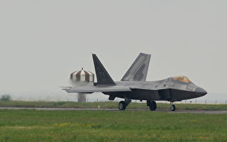 2万蜜蜂机头筑巢 美F-22猛禽战机被迫停飞
