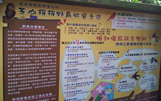台北芝山文化生態園區記趣