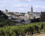 法国圣埃米利翁是著名的波尔多红葡萄酒产区。(NICOLAS TUCAT/AFP)