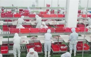近年來大陸各類食品安全事故頻頻發生,而中國體育總局早在多年前就已經為國家運動員提供「特供食品」。(網絡圖片)