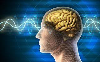 人的思想源於何處?或來自大腦之外