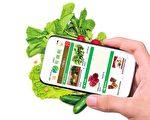 手機訂購有機蔬果不但方便快捷,也是繁忙工作後的一種療癒法,有機蔬果無論是香氣、清爽度及甜味都比較高,吃後令人心曠神怡,掃除一天辛勞!(安柏/大紀元)