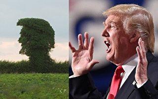英國現怪樹 髮型和大嘴酷似川普