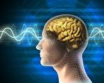 神经学家:你的思想能改变现实环境