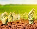 想在土地上「種出」黃金,就不能不留意土地背後的信息。(shutterstock)