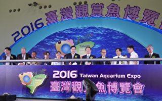 觀賞魚博覽會高雄登場 珍奇魚蝦總動員