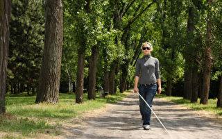 盲人的蓝图:心觉