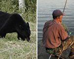 黑熊遭遇空手道高手 灰頭土臉認栽逃走