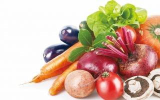 健康的隐形推手:酵素 不可或缺