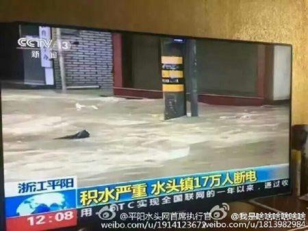 浙江平陽縣水頭鎮在「鯰魚」颱風期間,全鎮被水淹兩天兩夜,街道滿目瘡痍。(網絡圖片)