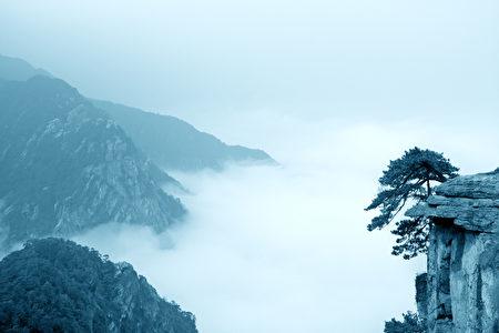 松树在悬崖上,云雾庐山,中国