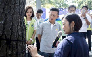 新竹公园千颗树    都有身份