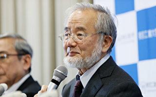 大隅良典为何获得2016年诺贝尔医学奖 ?