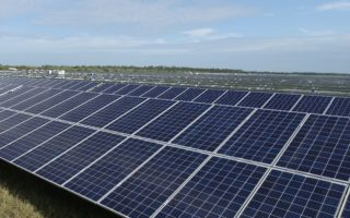 杜克教授王保硕和他的太阳能农场