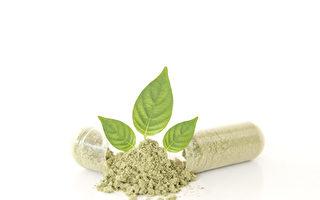 合成藥物與藥用食物。(Shutterstock)