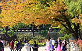 组图:首尔古宫殿美丽秋景 游客流连忘返