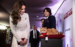 《遇见街猫BOB》首映 凯特王妃与Bob相见欢