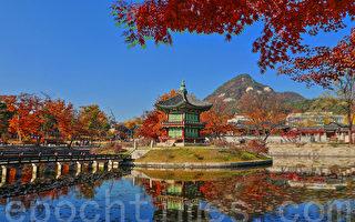 组图:首尔景福宫 枫红与建筑相映成趣