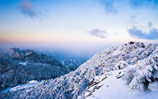 「小雪」裡的巨手,撫平身心創傷