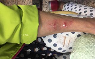 兩名陸客台灣夜市玩空拍機 砸傷議員母親