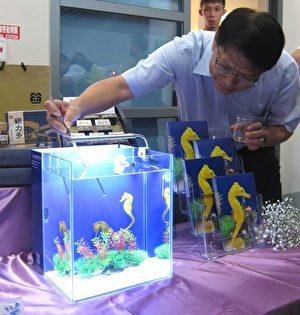 屏東長行海洋生技公司首創國內海馬人工繁養殖,專利「海馬觀賞水族箱」將於台灣國際漁業展中展售。(簡惠敏 /大紀元)