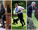 组图:川普不养宠物 或破白宫百年传统