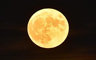 组图:全球各地超级月亮 美得令人窒息
