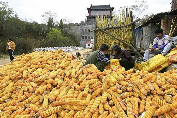 中國農產品生產消費數據 中美估算差異巨大