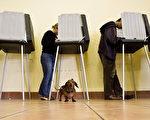 随着周二首轮投票结束,焦虑的美国人等待着谁将在历史上最激烈的大选中胜出的迹象——是民主党候选人希拉里将维持她的选前微小优势,还是共和党候选人川普将做出惊人的翻盘。(David Paul Morris/Getty Images)