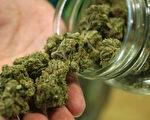 marijuana非藥用娛樂性大麻
