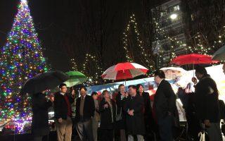 法拉盛圣诞树点灯 点亮节日季