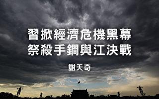 谢天奇:习掀经济危机黑幕 祭杀手锏与江决战