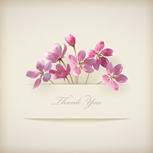 Floral spring vector \'Thank you\' pink flowers card