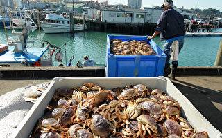 旧金山湾区捕蟹渔民也加入罢工