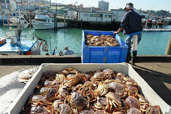 舊金山灣區捕蟹漁民也加入罷工