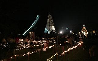 东海装置艺术已点灯  提前感受耶诞气氛