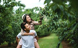 Cherry Hill櫻桃園——融化在幸福的甜蜜中
