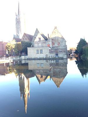 2016年比利時布魯日冬季花展在中世紀的醫院(oud saint Jan Hospitaal)舉行。(蕭依然/大紀元)