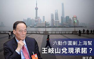 谢天奇:六动作围剿上海帮 王岐山兑现承诺?