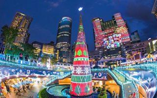 全球惊艳圣诞树 台湾新北欢乐圣诞城上榜