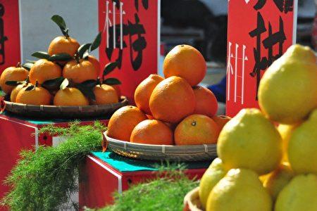 新竹县柑橘种类多、品质佳,在全国产出居重要地位。(赖月贵/大纪元)