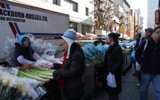 华埠鲜花热销 街上处处见银柳