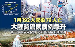 大陸禽流感病例急升  1月192人感染79人亡